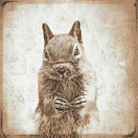 EICHHÖRNCHEN Waldtiere Vintage Bild auf Holz Leinwand Print Wanddeko Landhausstil Shabby Chic handmade kaufen Bild 5