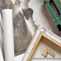 EICHHÖRNCHEN Waldtiere Vintage Bild auf Holz Leinwand Print Wanddeko Landhausstil Shabby Chic handmade kaufen Bild 6
