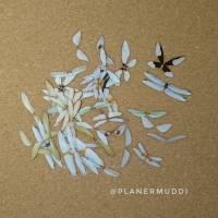 """Sticker-Set """"Butterfly"""" 6, 20-teilig Bild 1"""