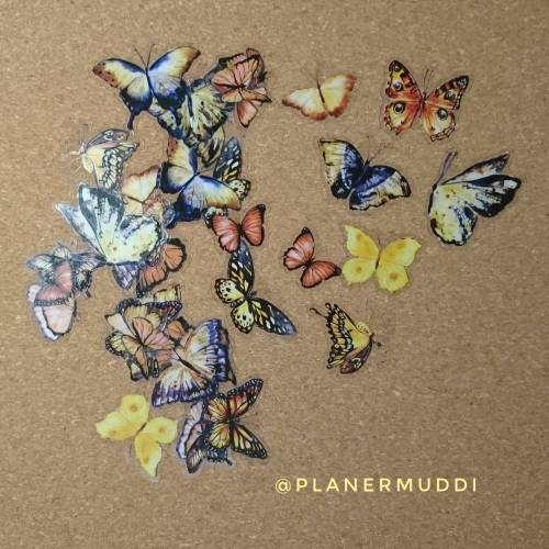 "Sticker-Set ""Butterfly"" 8, 20-teilig"