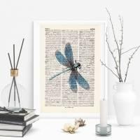 Libelle - Druck auf antiquarischer Buchseite Bild 1