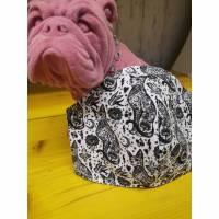 Behelfsmaske, Gesichtsmaske vintage Schwalbe katze , Nasen-Mund-Bedeckung , Maske, snutenpulli,  Bild 1