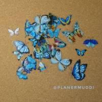 "Sticker-Set ""Butterfly"" 2, 20-teilig"