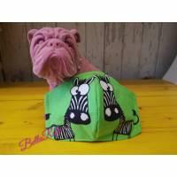 Behelfsmaske, Gesichtsmaske Lustiges glotzendes, schielendes Zebra, Nasen-Mund-Bedeckung , Maske, snutenpulli tiere Bild 1