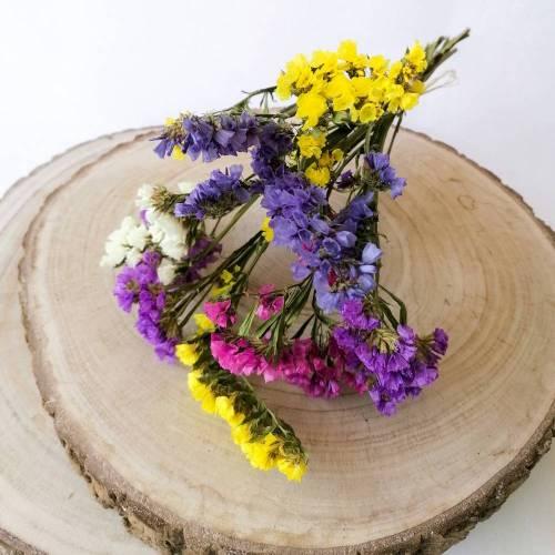 BIO Trockenblumen Limonium/ Statice als Blumenstrauß oder als Dekoration für Hochzeitstorten Bunt oder Uni (DEMETER)