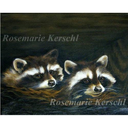 Waschbären Acrylbild handgemalt 24 x 30 cm Querformat auf Keilrahmen
