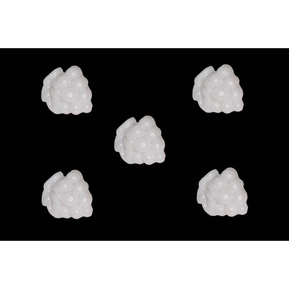 Kinderknöpfe Trauben als Kunststoffknöpfe in weiß 18 mm Bild 1