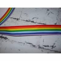 Regenbogen   25 mm  Borte Ripsband Bild 1