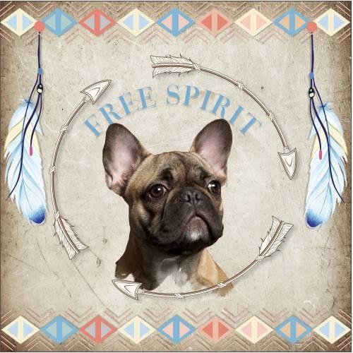 Hundebild Nativ Fanzösische Bulldogge
