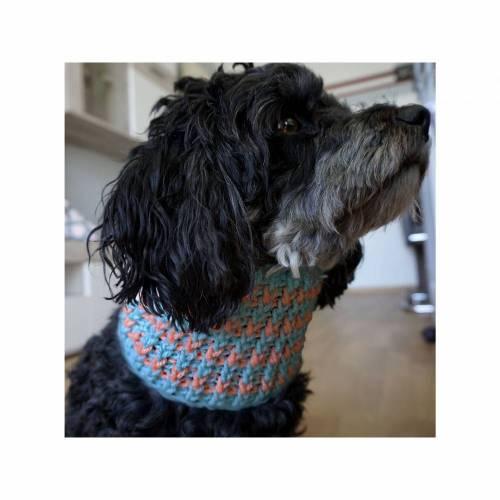 Häkelanleitung für einen Hundeloop
