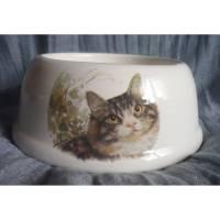 Kleiner Fress-oder Wassernapf für Hunde o. Katzen,Futter,Napf,getigerte Katze Bild 1