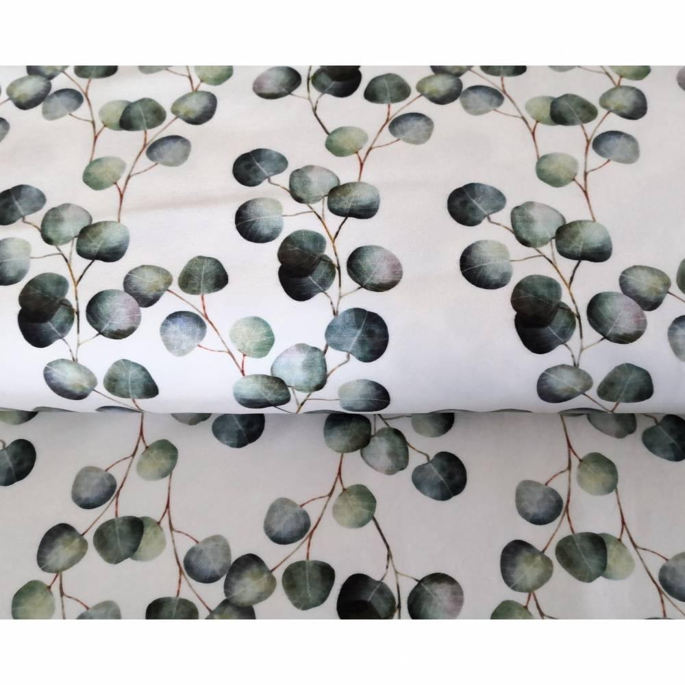Jersey mit Eukalyptus Baumwolljersey Grundpreis 21,90 Euro pro Meter Bild 1