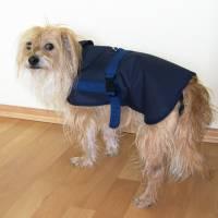Hundebekleidung, Hundegeschirr, Regenschutz Hunde, Hundemantel, Regenmantel Hunde,  Regencape für Hunde, grün, blau, schwarz, Wunschfarbe Bild 5