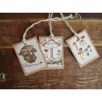 3 Geschenanhänger/Tags , Mushrooms ,Pilze , Vintage / Shabby~Herbst~Karten-Bild auf Kartonage~Beige- Braun Bild 1