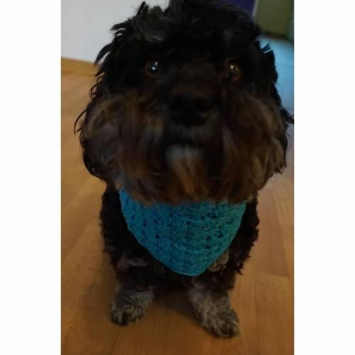 ♡ Hundehalstuch Hellblau 34cm Umfang ♡ amigoll9 ♡ Deko ♡ Handmade ♡