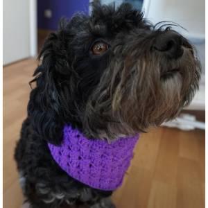 ♡ Hundehalstuch Lila bis 33,5cm Umfang verschließbar ♡ amigoll9 ♡ Deko ♡ Handmade ♡
