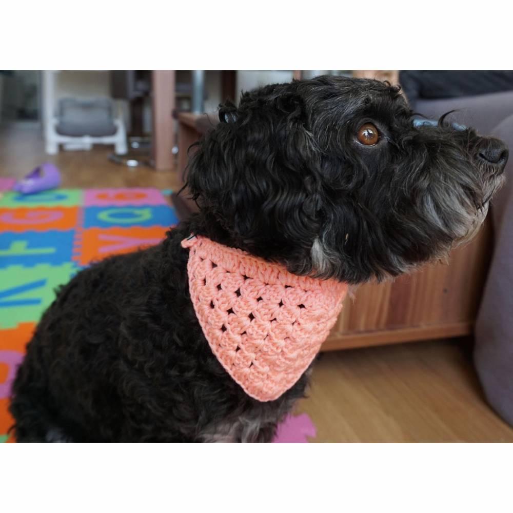 Hundehalstuch rosa & bis 32cm individuell verschließbar  Handarbeit  Bild 1