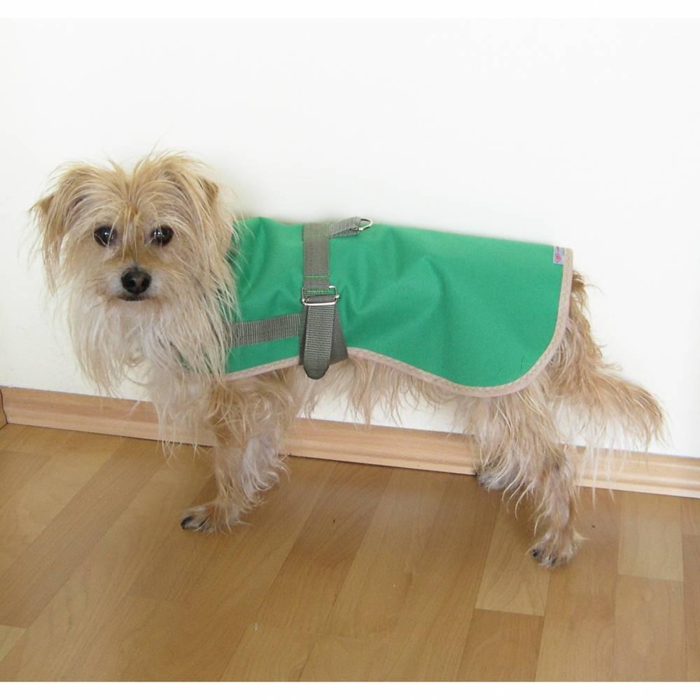 Hundemantel, Regenmantel Hunde, Hundebekleidung, Hundegeschirr, Regenschutz Hunde, Regencape für Hunde, grün, blau, schwarz, Wunschfarbe Bild 1