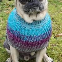 gehäkelter Hundepulli nach Mass, Tierkleidung, Hundepullover, Winterpulli Bild 1