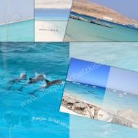 DIY Grafik-Set Digitales Papier für Innenseiten (Signaturen) für Junk-Journals, Motiv *Urlaub am Meer 001*, entworfen von Alanja