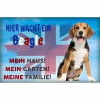 Warnschild  Hier wacht ein Beagle mit Englischer Flagge Bild 1