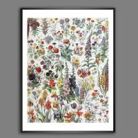 Blumen I. Illustration aus dem Lehrbuch - Vintage, Shabby Chic, Boho - Poster Kunst Druck - Wanddekoration Landhaus Bild 1