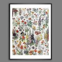 Blumen I. Illustration aus dem Lehrbuch - Vintage Blumenbild Boho - Poster Kunst Druck Wanddekoration Landhaus Geschenk  Bild 1