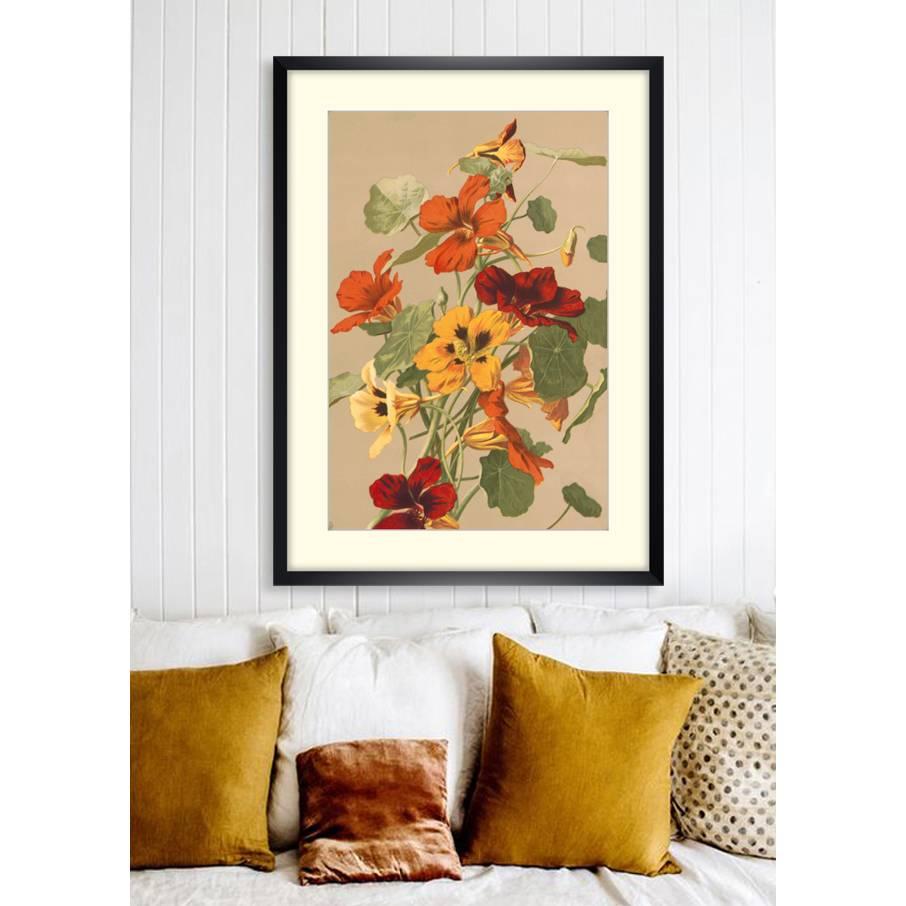 Brunnenkresse Blumenbild 1885 Illustration - Poster Kunstdruck - Vintage Art - Shabby - Kunst - Druck - Wanddeko Bild 1