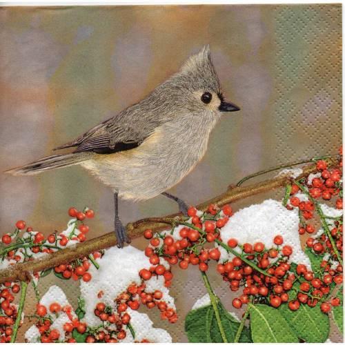 5 Servietten / Motivservietten  Vogel Motive  / Vogel auf Zweig V 373