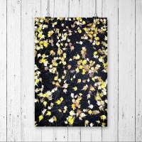 Herbst Blätter Druck, Hintergrund schwarz, Fotografie, DIN A4 Wandbild, Poster, moderne Wanddekoration, Herbstdekoration