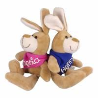 Kuschelhase mit Namen - Kuscheltier Hase personalisiert -Kuscheltier mit Wunschbeschriftung- Ostergeschenk Geschenk Bild 1