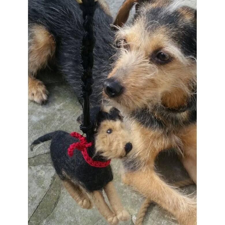 Kotbeutelspender aus Filz nach dem Foto deines Hundes, individuelles Täschchen zum Gassigehen, personalisiert Bild 1