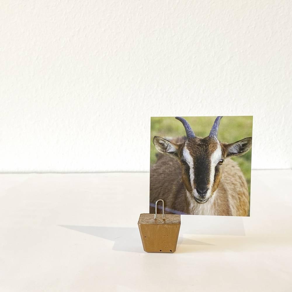 Memohalter Fotohalter Zettelhalter bronzefarben Bild 1