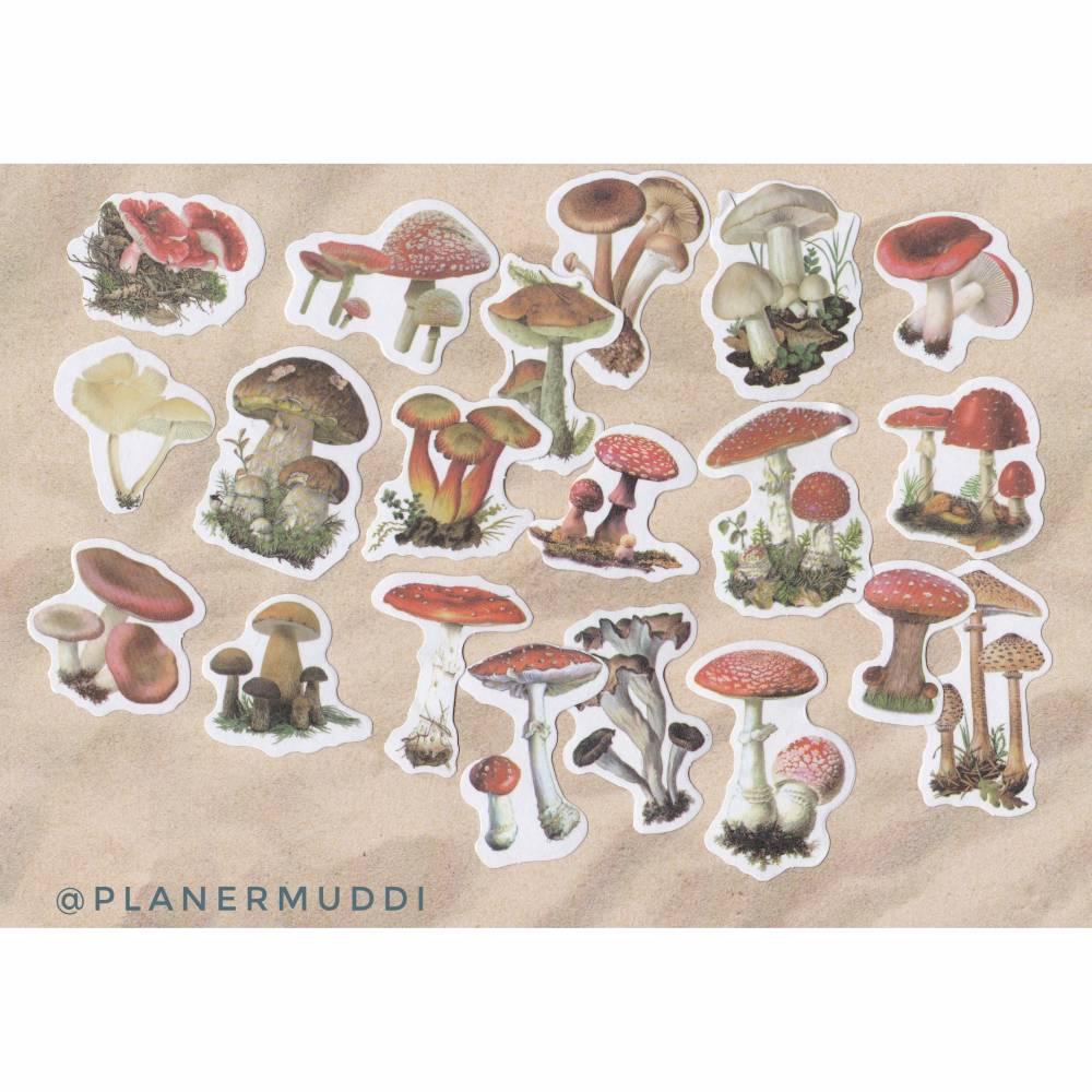 "Sticker-Set ""Pilze"", 20-teilig Bild 1"