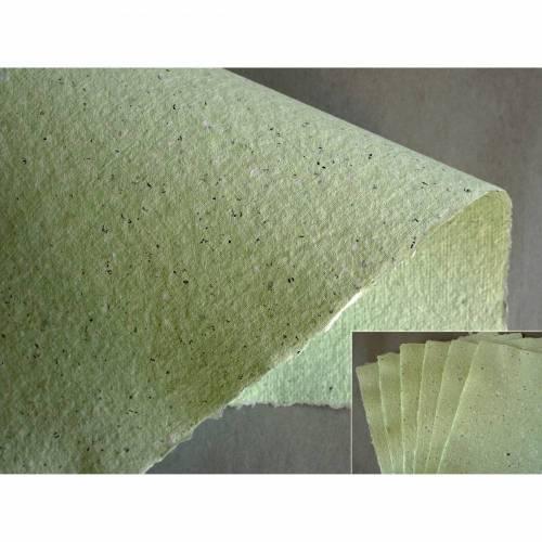 6 Blatt handgeschöpftes Papier, ca. 21 cm x 29,5 cm, hellgrünes Recyclingpapier zum Basteln, Schreiben, Stempeln