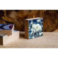 Kirschblüten im Frühling Blüten Holzdruck Quadrat 7,5x7,5 cm Holzbild im Shabby-Stil Photo on Wood gifts gift for her Bild 1