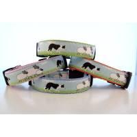 Welpenhalsband Border Collie ohne Unterfütterung (größere Verstellbarkeit) aus der Halsbandmanufaktur von dogs & paw Bild 1