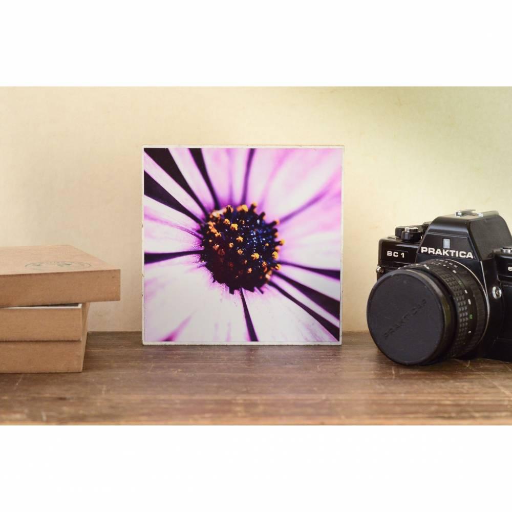 Blumenwiese Sommer rosa Wandgestaltung, Foto auf Holz, im Quadrat, 13 x 13 cm handmade Bild 1