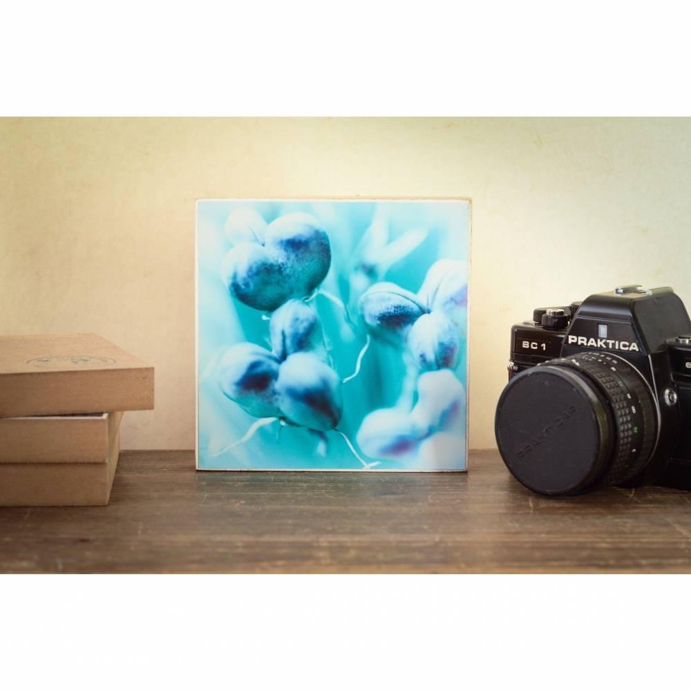 Blumenwiese Sommer türkis Makro Wandgestaltung, Foto auf Holz, im Quadrat, 13 x 13 cm handmade Bild 1