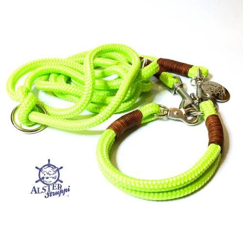 Leine Halsband Set pistaziengrün, braunes Leder, für kleine Hunde mit 6 mm Tau