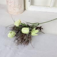 Fritillaria Deko Blumen, Tischdeko, Schachbrettblume, 2 Stiele, je Stiel 2,95 Euro, Floristikbedarf Bild 1