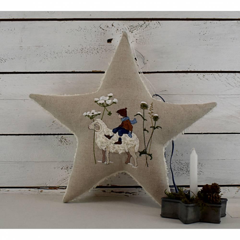Winterwiese - zauberhafter Stern Bild 1
