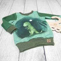 Pullover - Langarmshirt Mamasliebchen Dino T-Rex 74/80 Bild 2