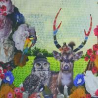 Stenzo Jersey Digitaldruck Hirsch mit Eule Panel 120 x 150 cm Bild 3