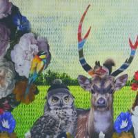 Stenzo Jersey Digitaldruck Hirsch mit Eule Panel 120 x 150 cm Bild 4