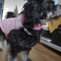 Hundemantel rosa/grau gehäkelt Halsumfang 30-35cm Gesamtlänge 39cm Handarbeit Bild 6
