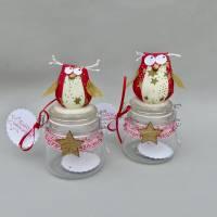 Weihnachts-Geschenk-Glas mit Eule, für Geld/ Gutschein/ Plätzchen, Geldgeschenk Bild 2