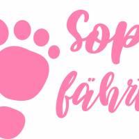 """Autoaufkleber mit Wunschnamen """"Sophie fährt mit"""" - Auto Sticker mit Babynamen Bild 2"""