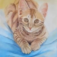 Kater Ginger , cat, Fellnase,  40 x 50 cm,  Acryl, handgemalt, Original , Unikat Bild 1