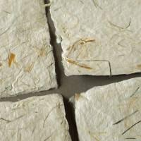 9 handgeschöpfte Kärtchen mit eingeschöpften Pflanzenfasern, ca. 10,5 cm x 10,5 cm, quadratisches Bastelpapier Bild 4